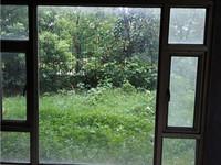 碧桂园独栋别墅,环境优美