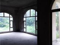 碧桂园天湖盛景408平方 双拼别墅 送300平方花园