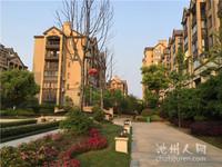 小罗出售志城江山郡三朝南户型,纯毛坯新房,小区环境优