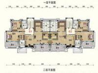 碧桂园天湖盛景388.88平米 高档豪装双拼别墅 送有500平米大院子