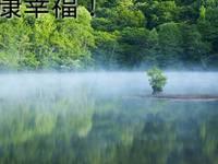 出租东湖小区121平米5000元/月商铺电大旁