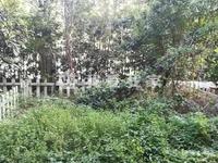 碧桂园秋浦水韵联排别墅出售。