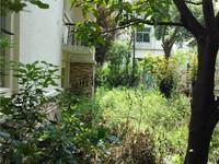 碧桂园天湖盛景别墅 毛坯现房 配套齐全带有大院子