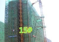 工程进度:香樟里7月份进度