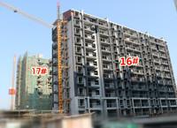工程进度:香樟里·那水岸11月进度,匠人之心,不负期待!