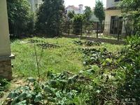 花园480平米,朝南户型好,位置好,带车库